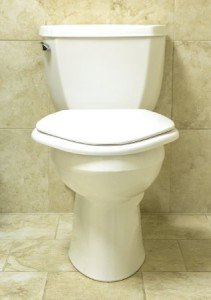 Big John 6W Standard Toilet Seat White