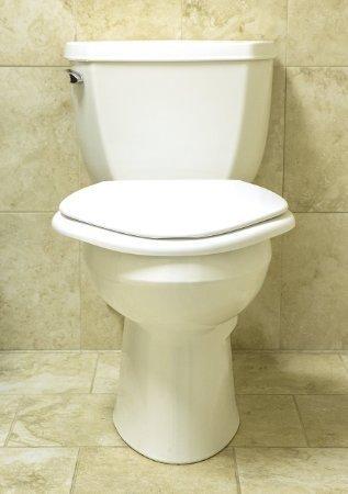 Big John 6w Standard Toilet Seat White Best Toilet