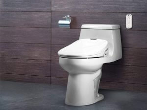 Best Bidet Toilet Seats For 2020