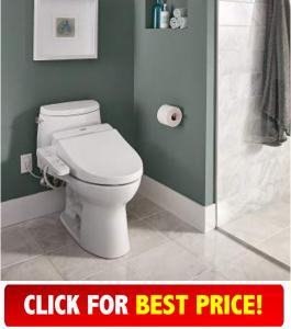 toto 100 Bidet Toilet Seat Review