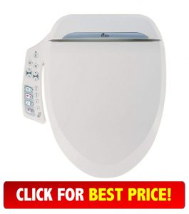 Groovy An Overview Of The 10 Best Bidet Toilet Seat Reviews For 2019 Dailytribune Chair Design For Home Dailytribuneorg