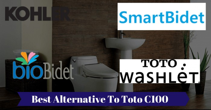 What Is The Best Alternative For Toto C100 Bidet Toilet Seat