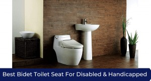 Is This The Best Seat You Could Possibly Have For Your Toilet?...You Be The Judge...
